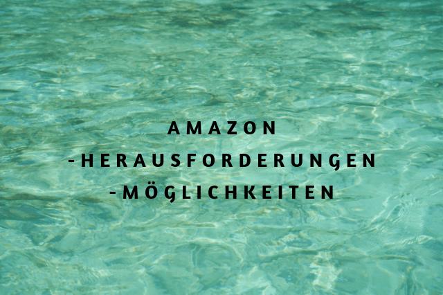 Amazon herausforderungen